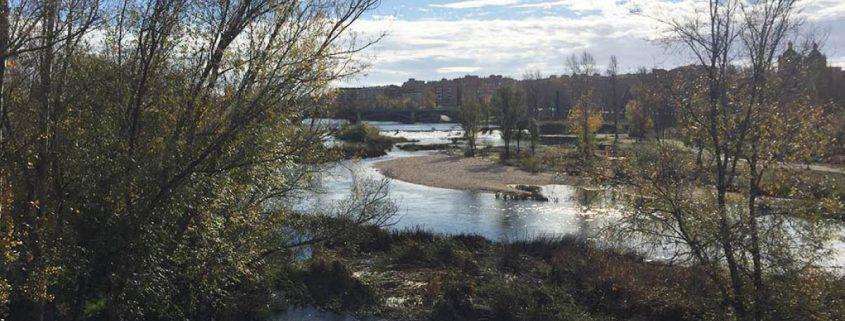 Qué hacer y ver en Salamanca: río Tormes desde el Puente Romano