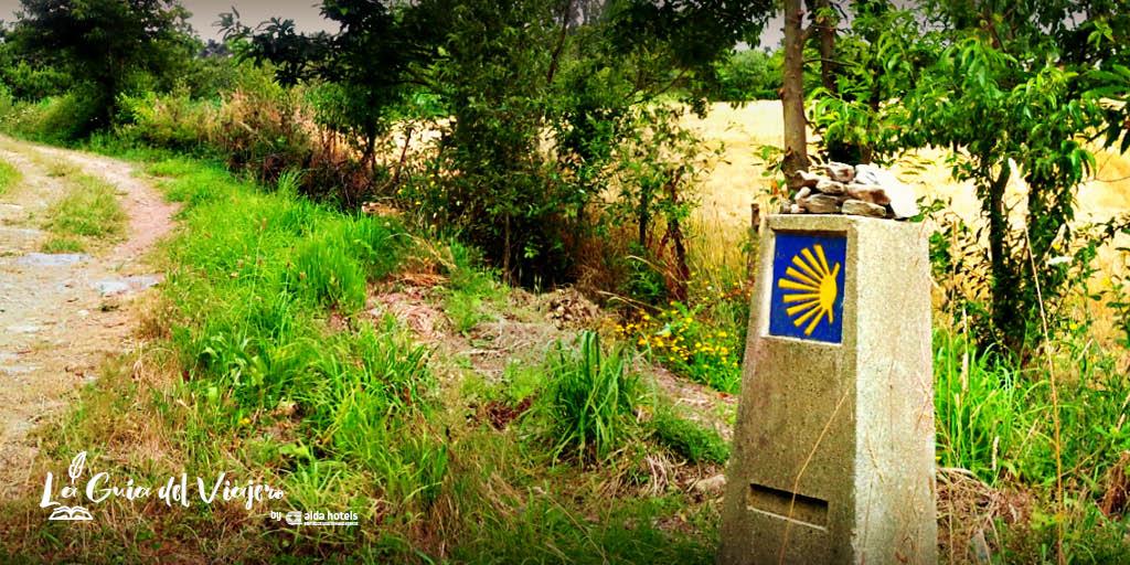 Imprescindibles de Santiago de Compostela: el Camino