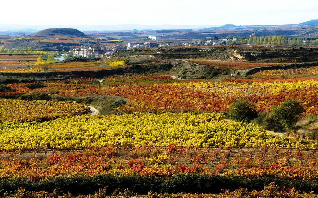Briñas es uno de los rincones secretos de La Rioja.