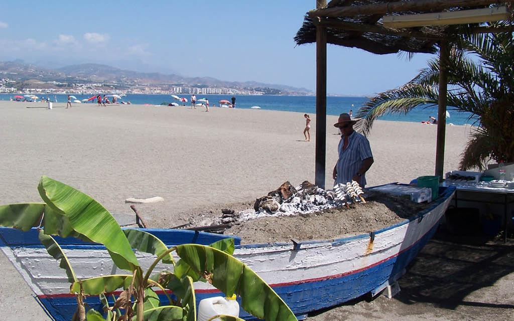 Torre del Mar es una de las mejores playas de Málaga para perros
